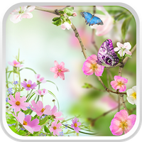Flores Papel de Parede Vivo